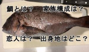 鯛について